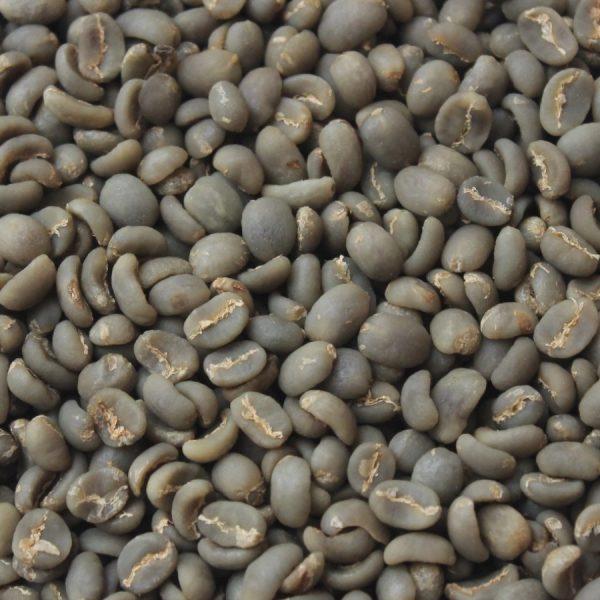 green bean aceh gayo grade 1
